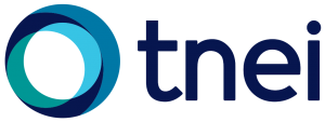 TNEI Large logo